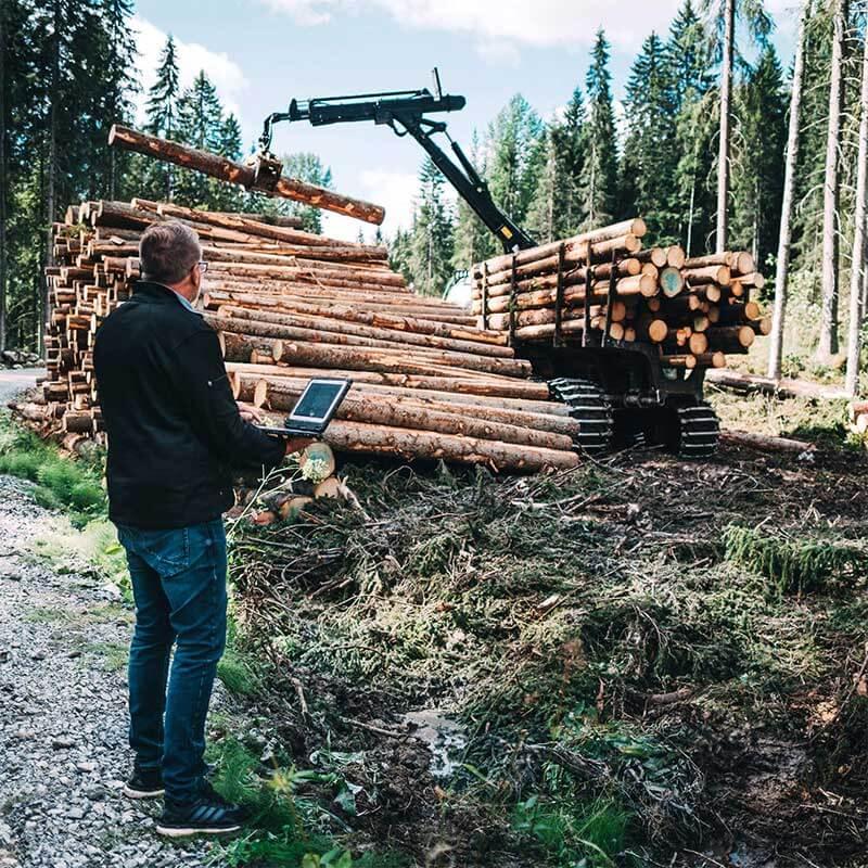 Ajokone kuormaa puita pinoon
